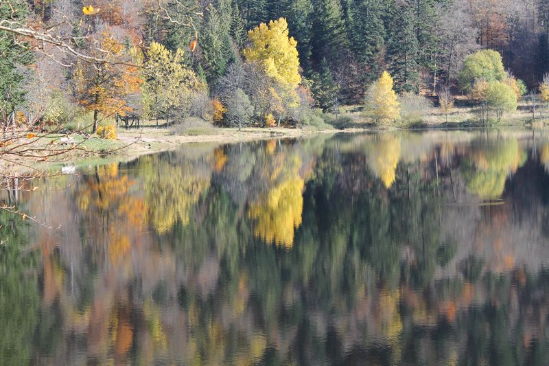 lac de blanchemer La Bresse